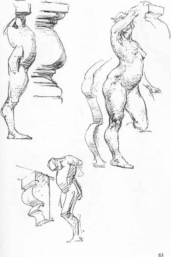 Anatomy Artist Landmarks - Anatomical Drawings - Joshua Nava Arts