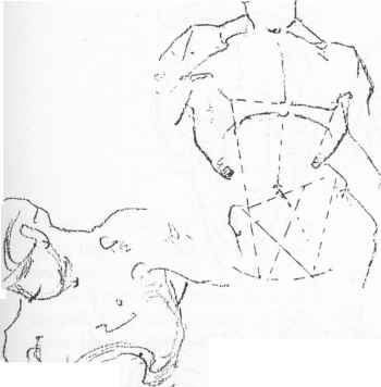 Drawing Collar And Breast Bones