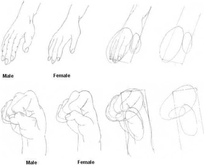 How Draw Anime Hands