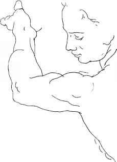 Man Anatomy Contour Draw