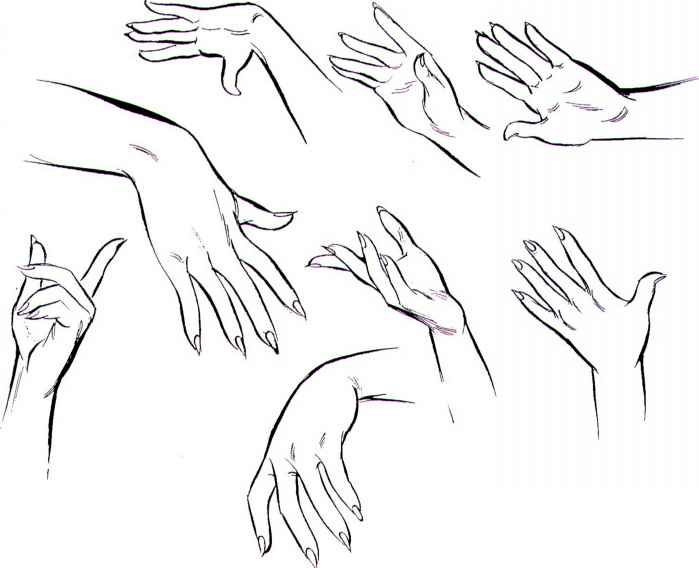 Slender Hand Poses For Drawing