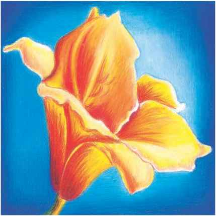 drawing with blue and orange colors - Color Drawing Pictures