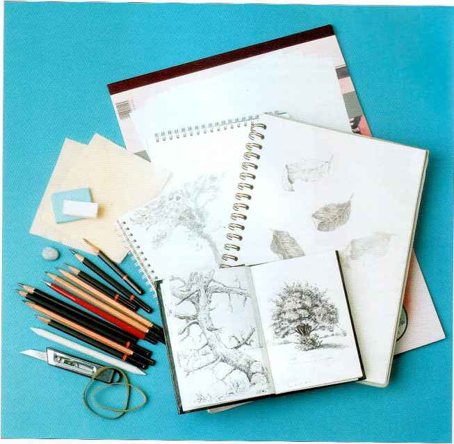Pencil Sketching For Experts