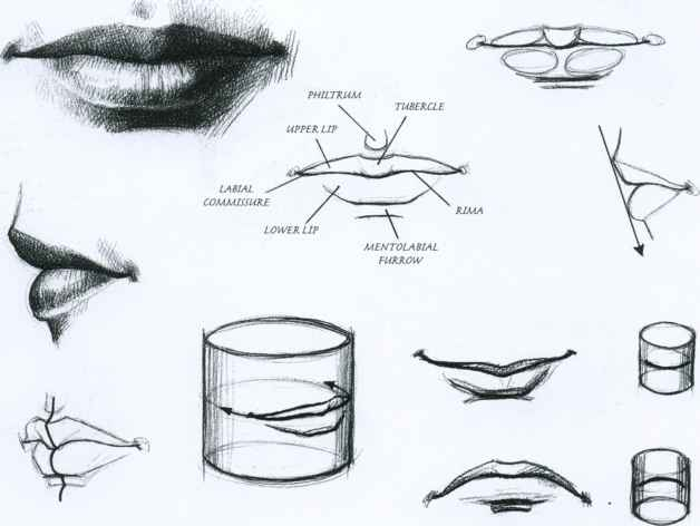 The Mouth Drawing Faces And Figures Joshua Nava Arts