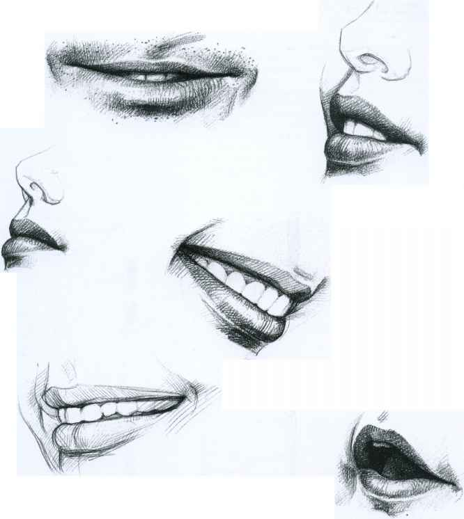 Mouth Teeth Drawing