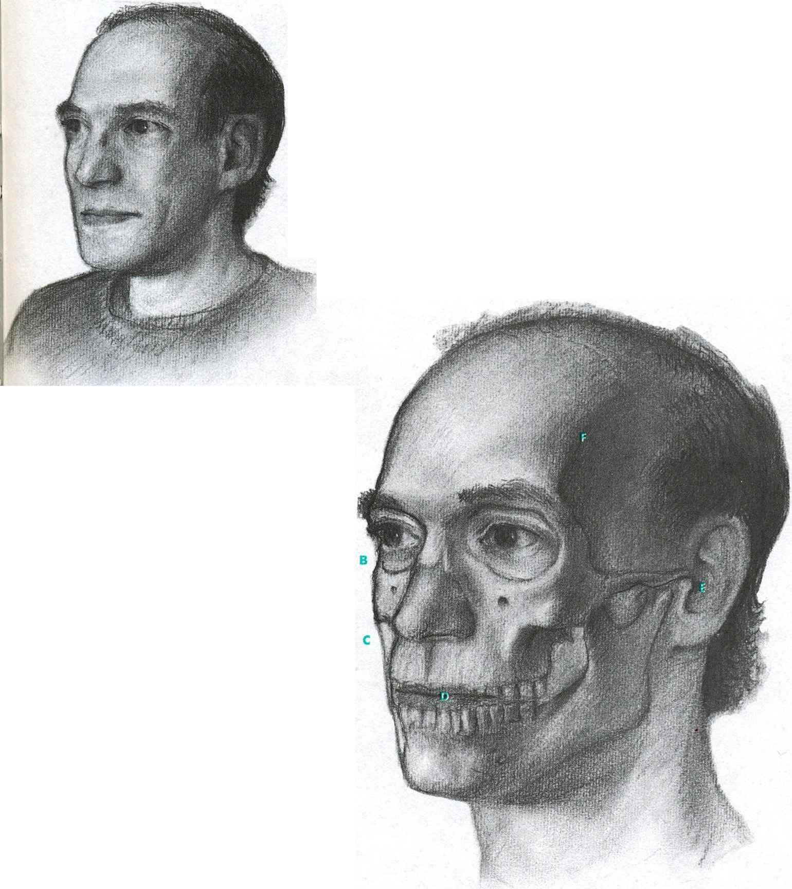 Portraiture - Facial Expressions - Joshua Nava Arts