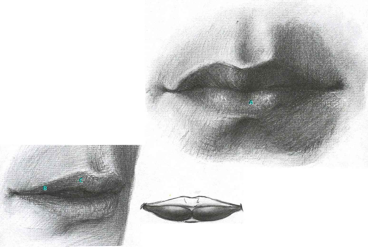 Lips Expression Outline Drawing