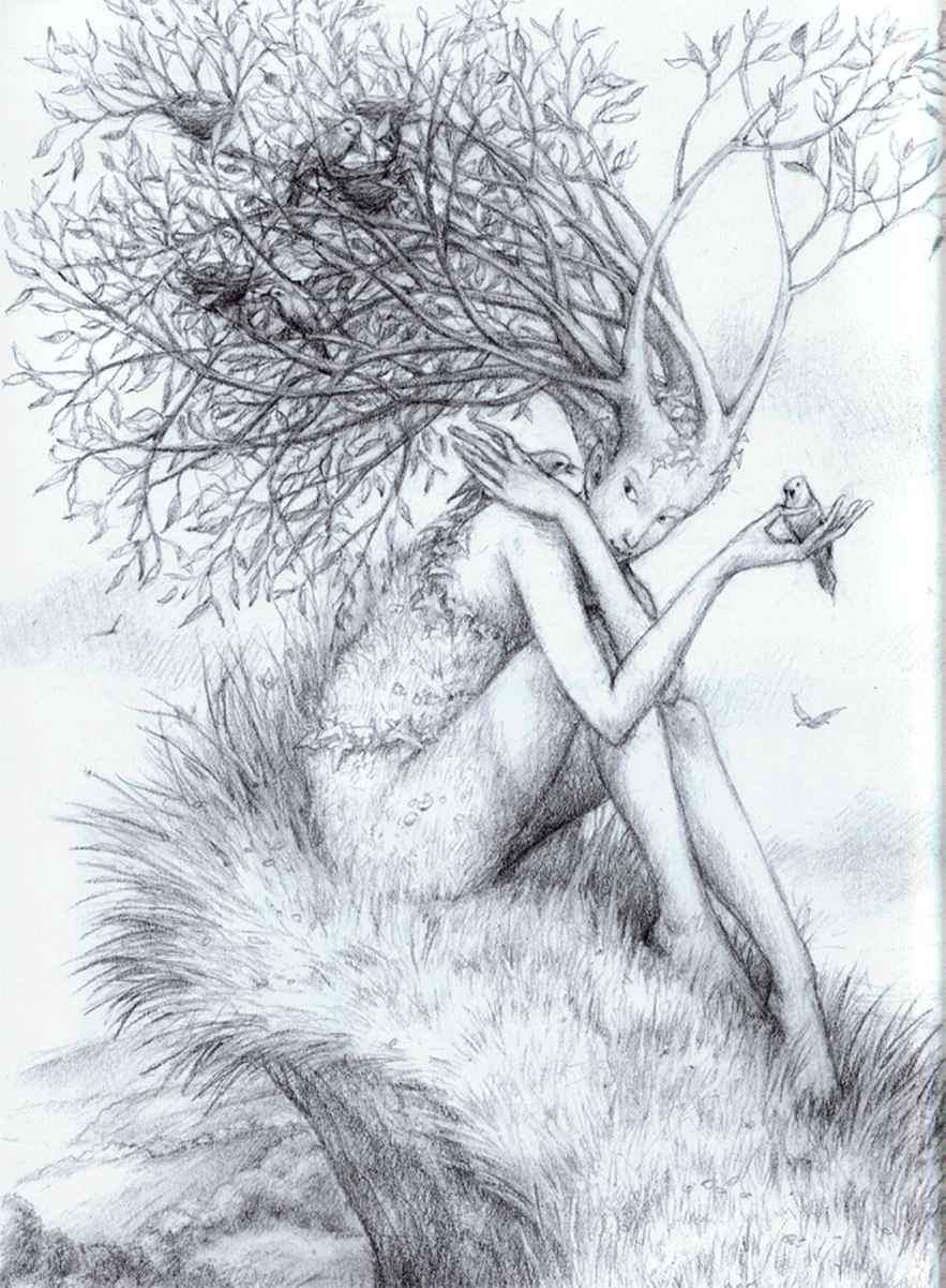 Nude elven girls pencil drawing naked scene