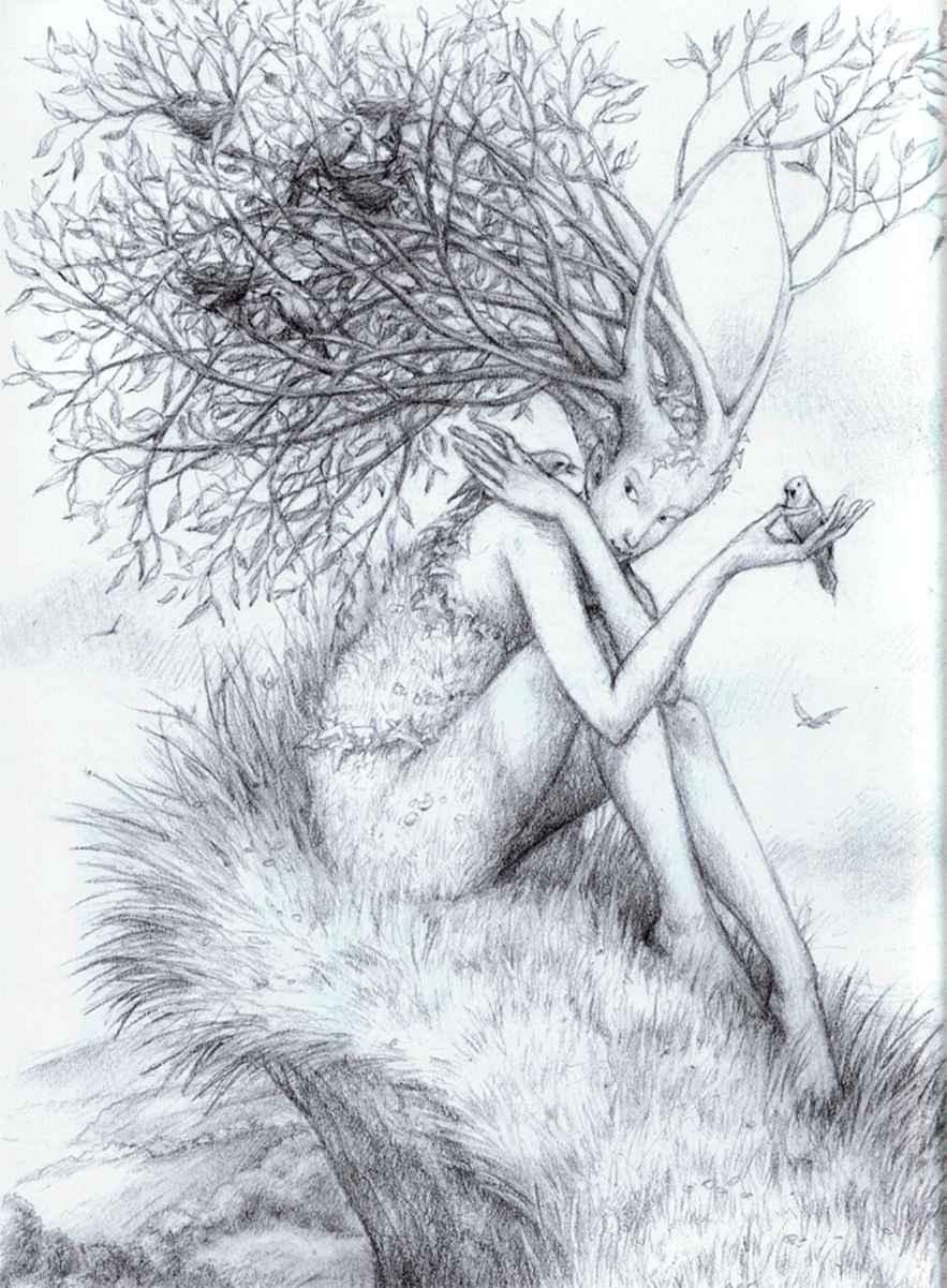 Inspiration from nature - Drawing Fairies - Joshua Nava Arts