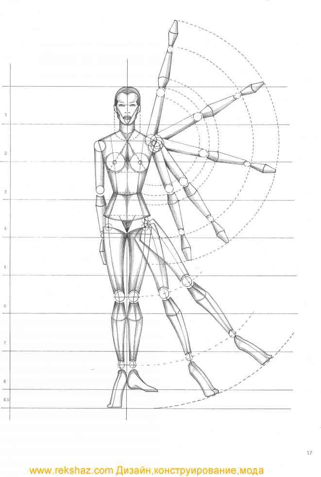 rule of proportion the human body fashion design joshua nava arts rh joshuanava biz draw free-body diagram for the lower magnet draw free body diagram of the ring a
