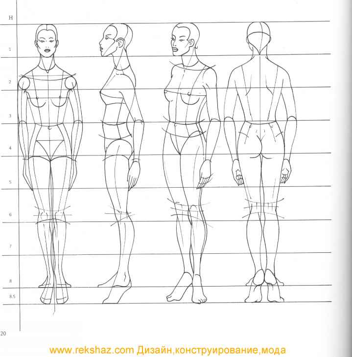 This is an image of Divine Human Drawing Proportions