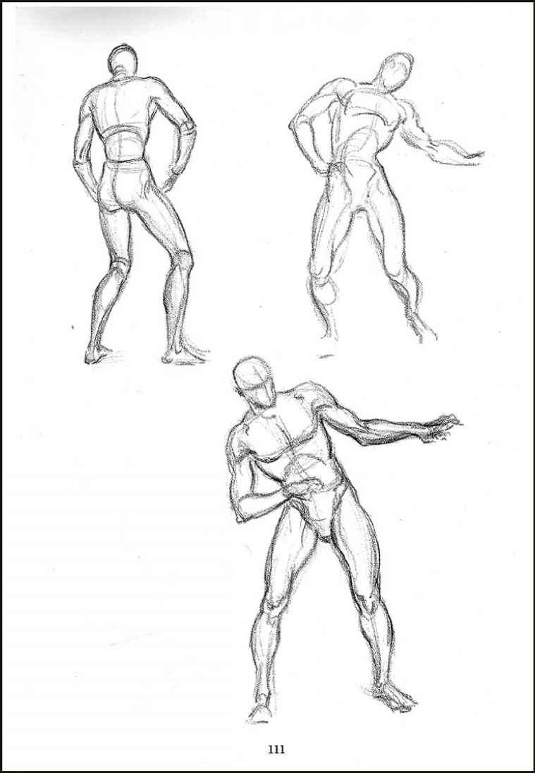 Female Figure Drawing Poses