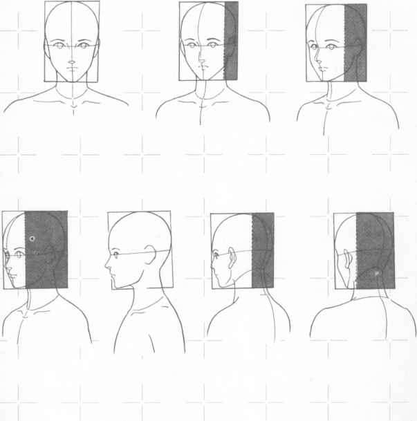 Drawing Faces Different Direcions