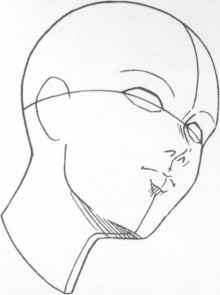 Nose Appears Wide Oblique Angle