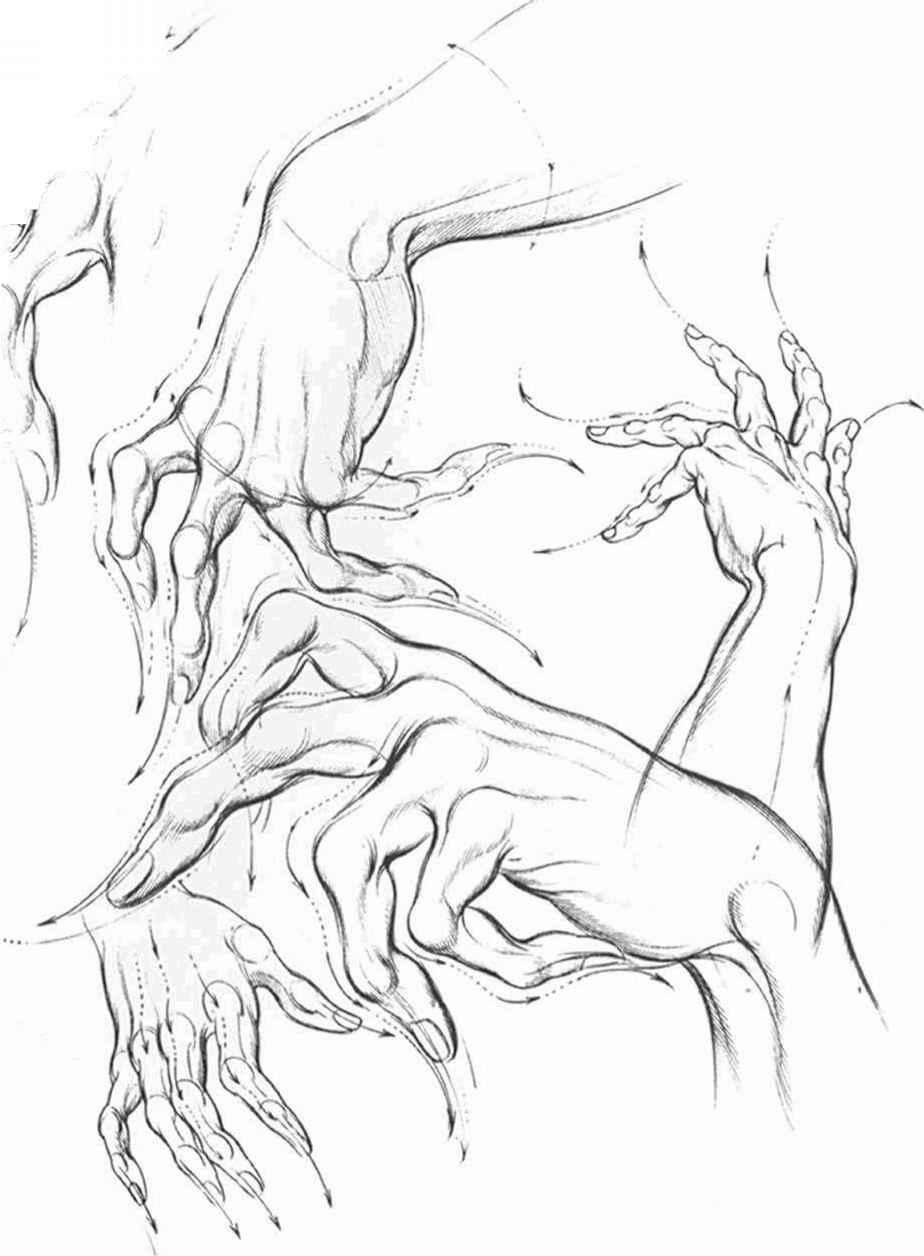 Hand Movements Drawing Hands Analysis Drawing