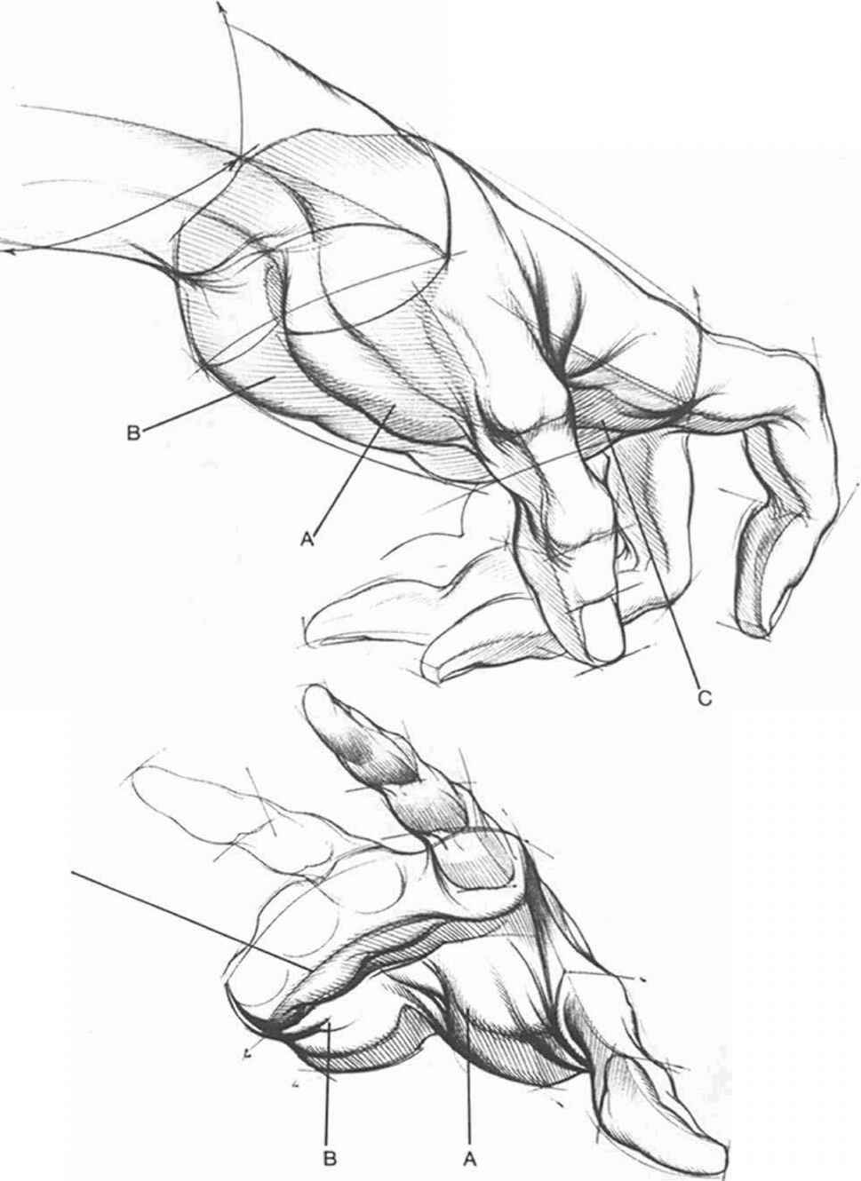 Forms And Structures Drawing Hands Joshua Nava Arts