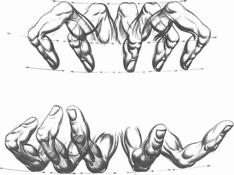 Foreshortening In Rotation - Drawing Hands - Joshua Nava Arts