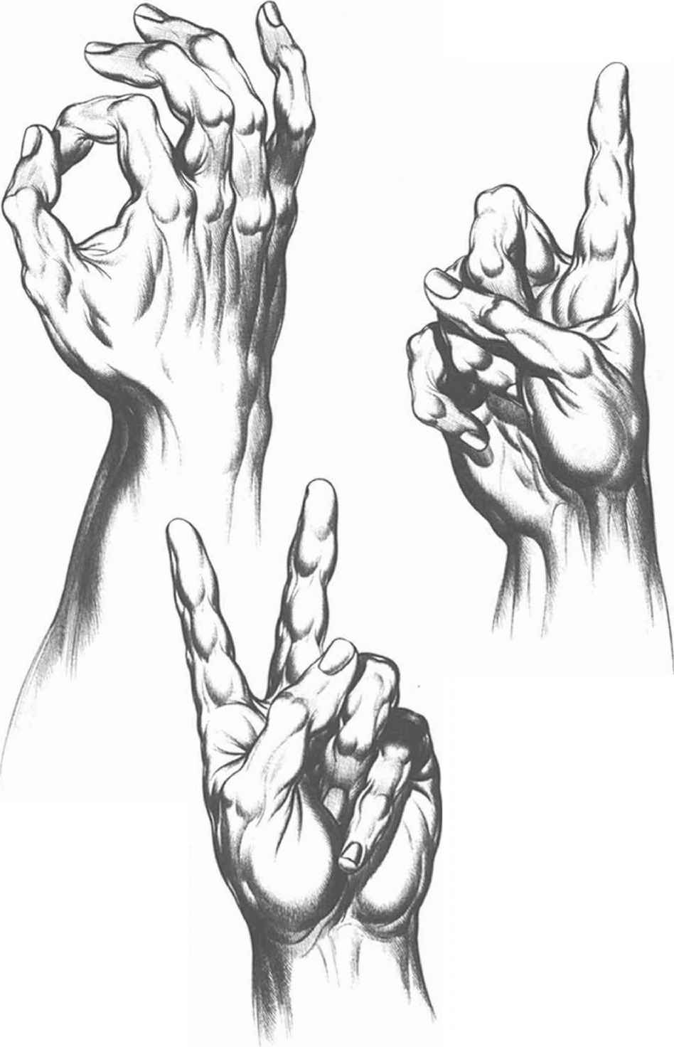 Communication And Gesture Drawing Hands Joshua Nava Arts