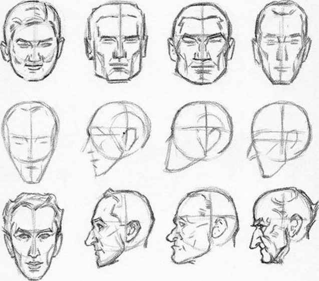 Shape The Head Draw