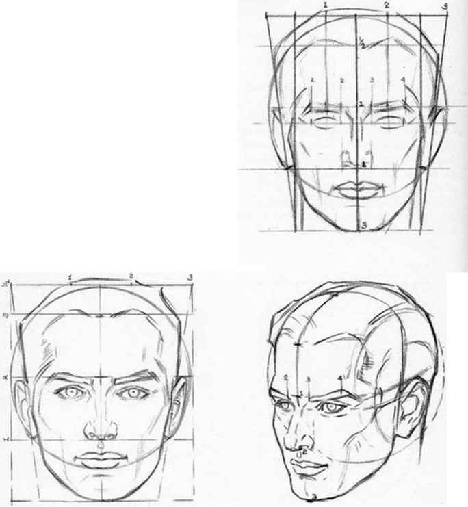 How Draw Human Head Plates