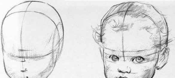 Face proportions babies baby head drawing