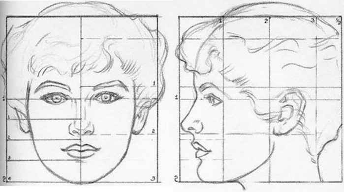 Generally draw facial proportions fact, Russian