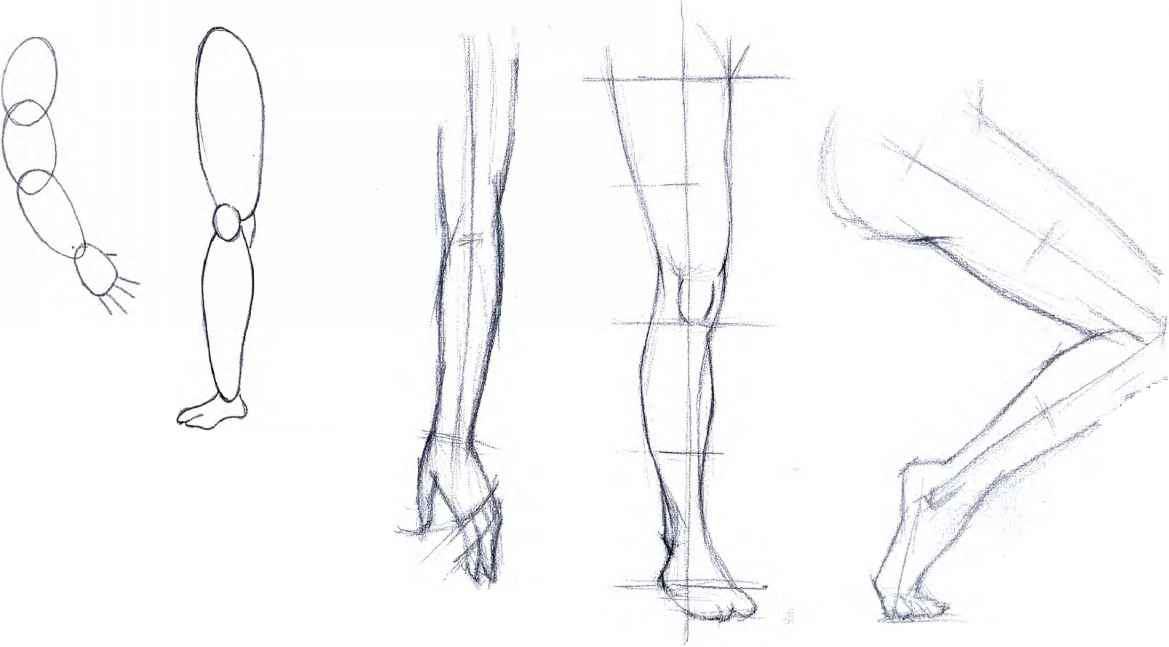 Human Figure Scale For Drawing