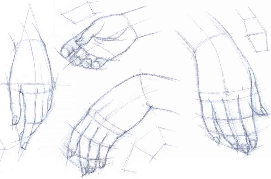 Realistic Female Hands Draw