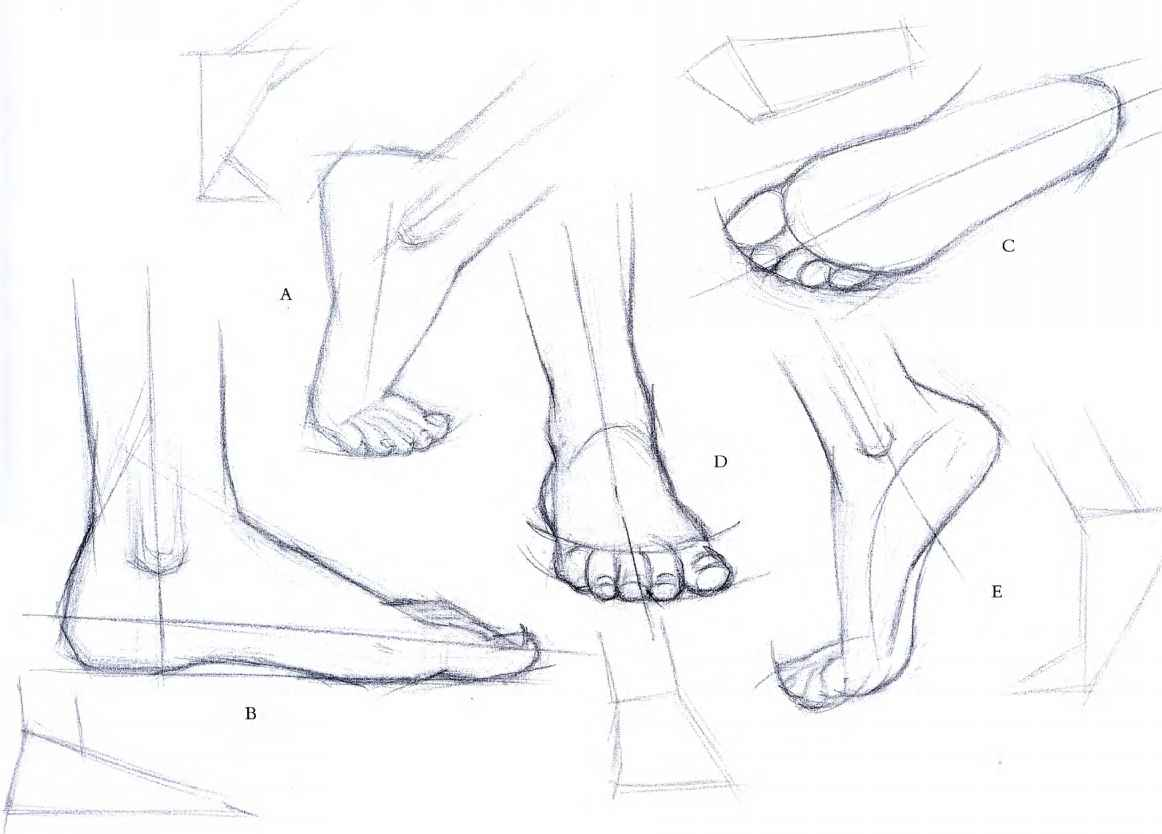 Pencil Sketches Toes