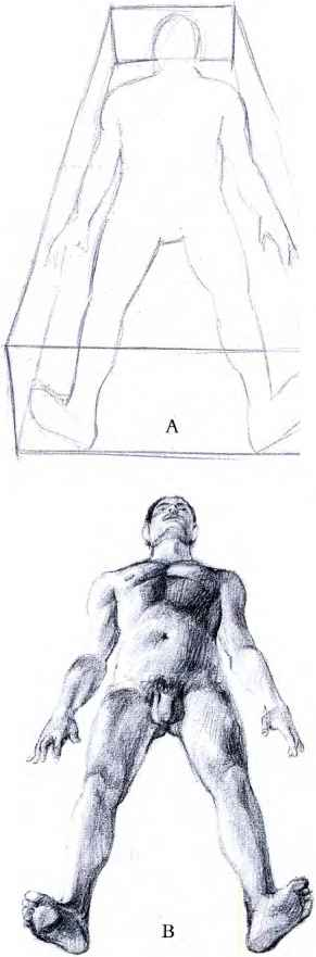 Human Figure Perspective Drawing