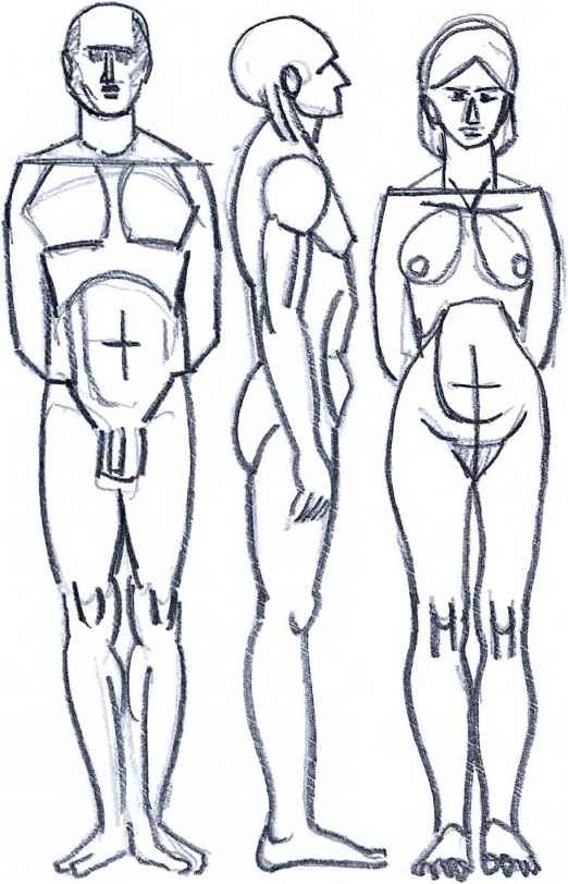 Guide Drawing The Human Body