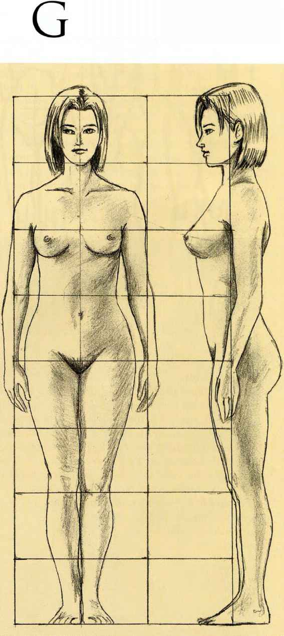 Body Height Drawing The Human Body Joshua Nava Arts