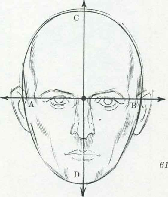 Line Drawing Of Human Face : Head rotation drawing the human joshua nava arts