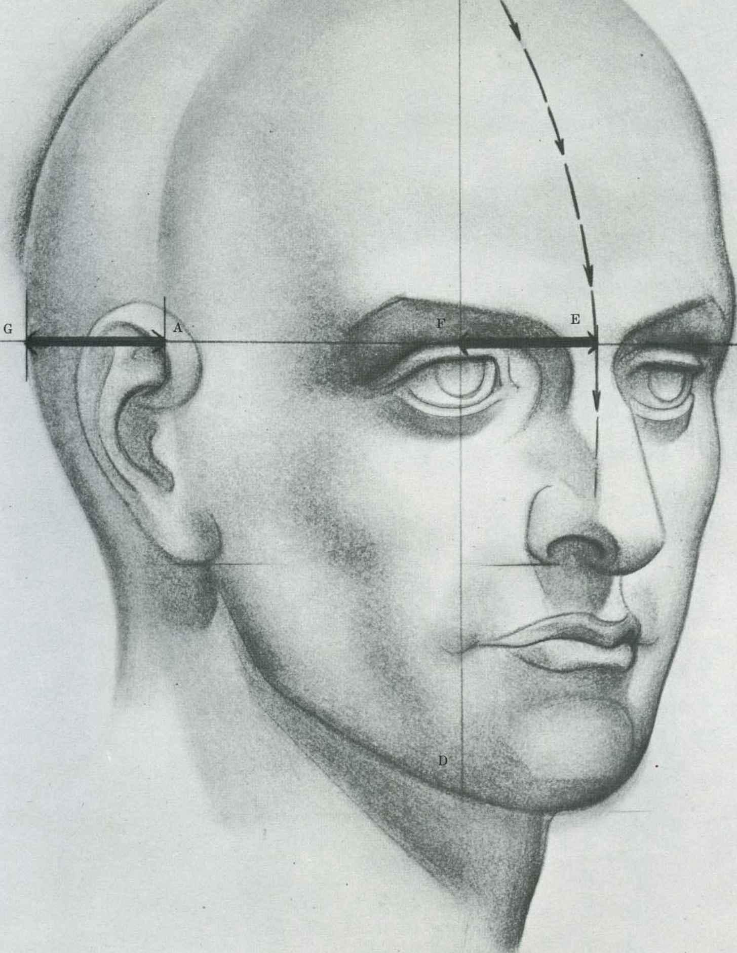Drawing The Human Head - Drawing The Human Head - Joshua Nava Arts