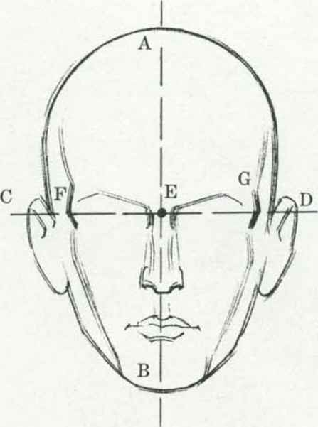 Drawing the human head drawing the human head joshua nava arts drawing the head ccuart Choice Image