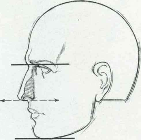 how to draw a head side on