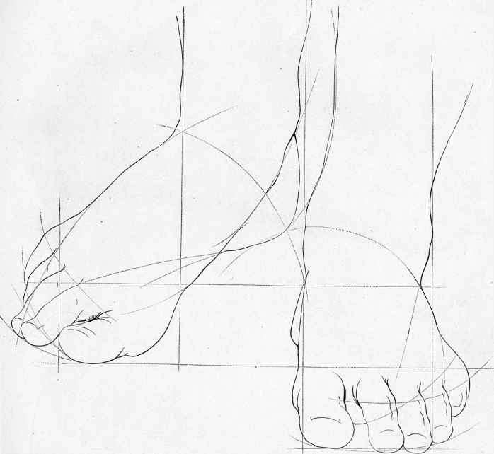 Sketches Of Human Anatomy Drawing The Human Head Joshua Nava Arts
