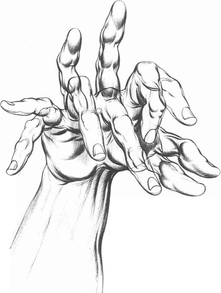 Inked Hand Pointing Drawing