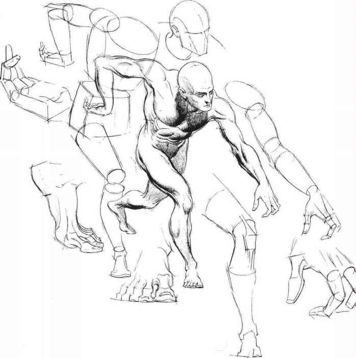 Figure Drawing Analytical Sketching