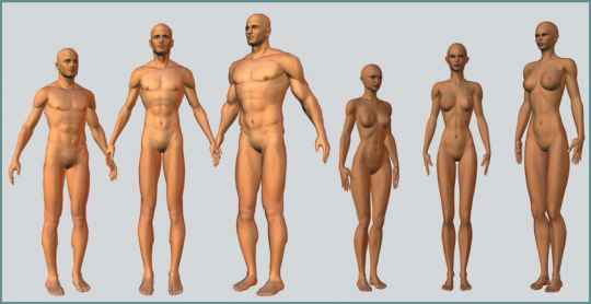 Nude Body Types