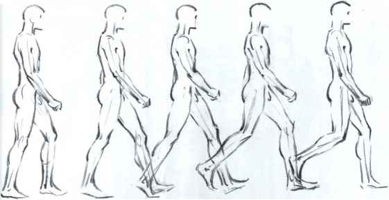Whole Body Movement Drawings