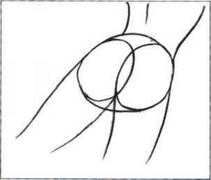 How Draw Female Buttocks