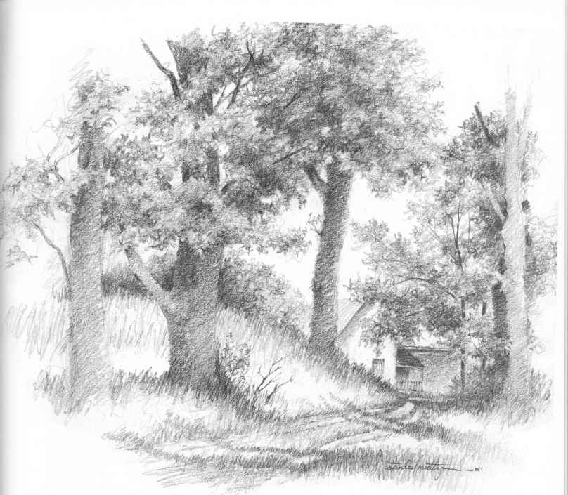 Decide on a style drawing nature joshua nava arts for How to draw nature for beginners