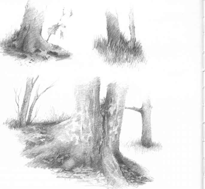 group tree drawings