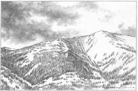 Mountain Range With Trees Drawing