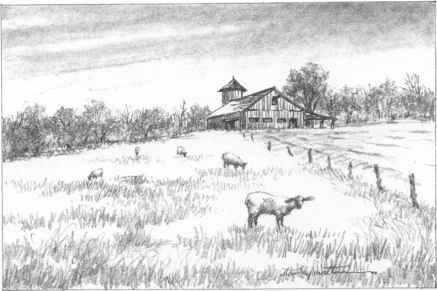 Barns Grass Rocks And Water Drawing Nature Joshua Nava