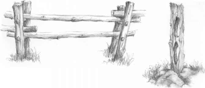 How Draw Fence Post