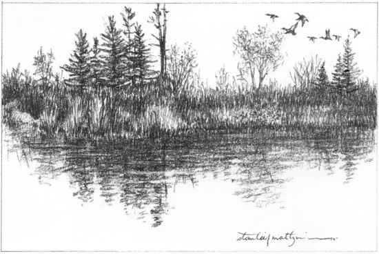 Simple Lake Nature Drawing
