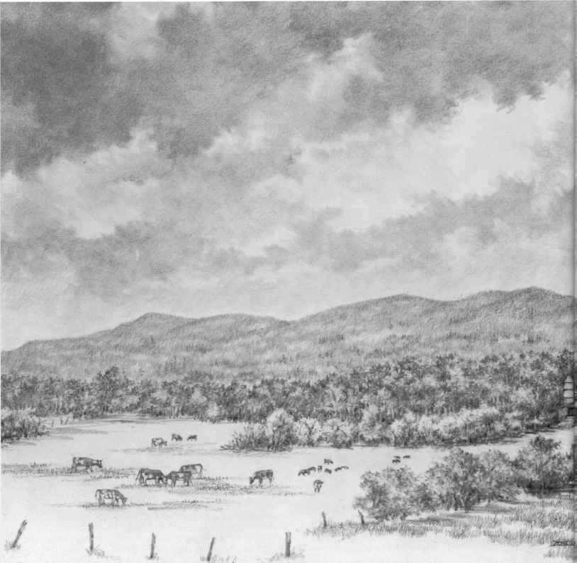 Farm Valley Drawing