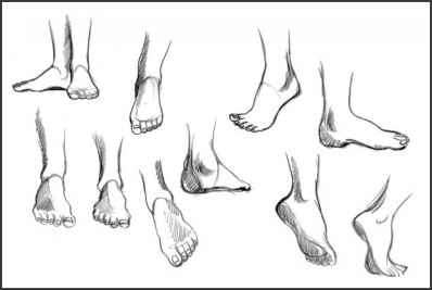 Foot Orthographic